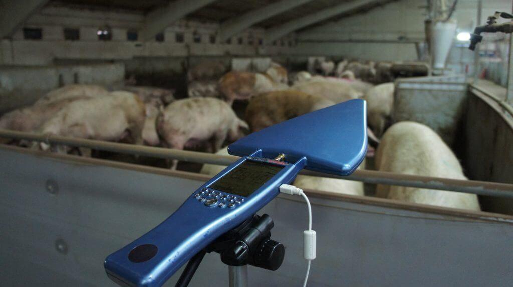 Evitar Contaminacio Electromagnetica Albesa 13 VEEMA Animal System