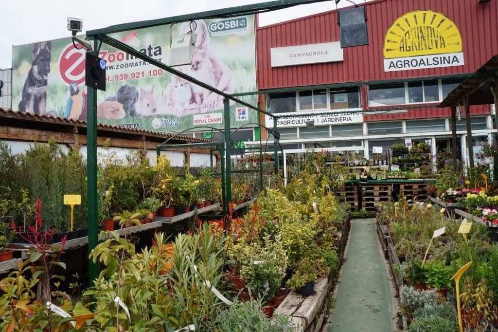 reducir contaminacion electromagnetica germina 8 VEEMA Vegetal System